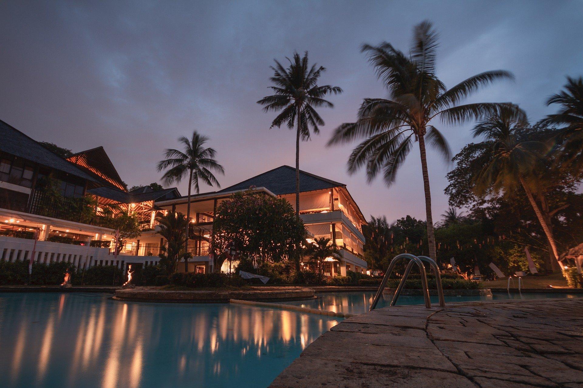 bazén a palmy