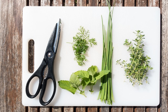 nůžky na bylinky.jpg