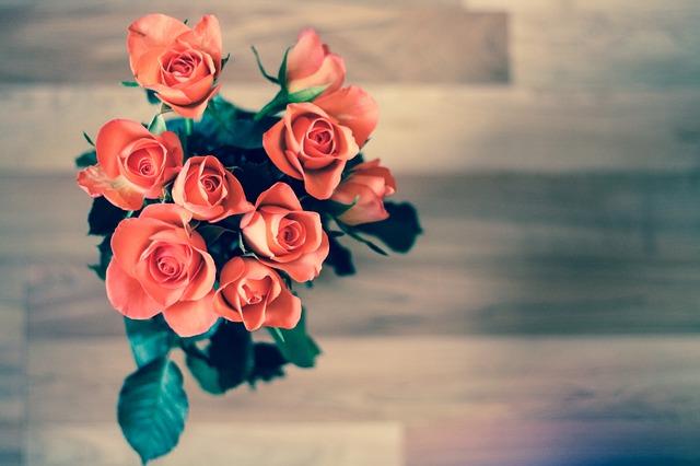 kytička růží